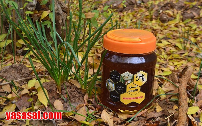 عسل طبیعی اکالیپتوس